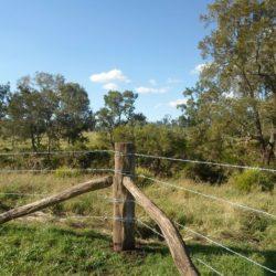 Судебное решение по спору о границах земельного участка